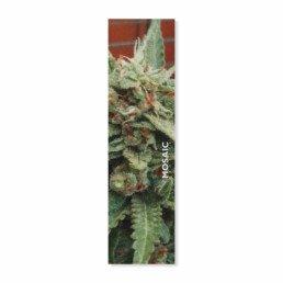 Mosaic Weed 9